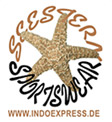 logo indoexpress